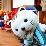 photo_608537