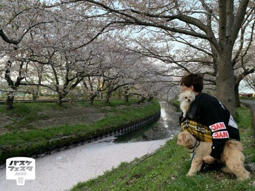 バスケ選手のペット大公開! 西村文男(千葉ジェッツ)「ビビりな愛犬にぞっこんです」